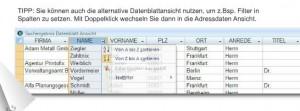 Verschiedene Ansichten: Datenblatt wie Excel oder Formular